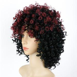 Medium Afro Curly Full Bang Colormix Synthetic Wig - COLORMIX