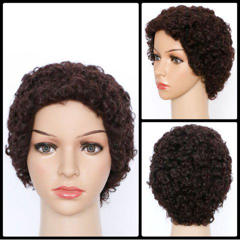 New Spiffy Short Curly Synthetic Wig