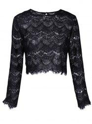 Round Neck Long Sleeve Lace Top -