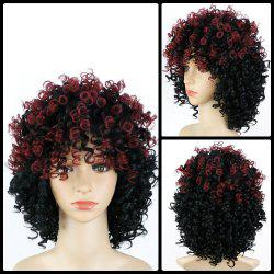 Medium Afro Curly Full Bang Colormix Synthetic Wig