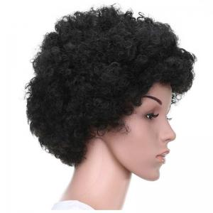 Short Fluffy Afro Curly Capless Full Bang Synthetic Wig - BLACK BROWN