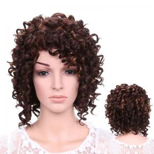Short Fluffy Afro Curly Side Bang Synthetic Wig