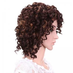 Short Fluffy Afro Curly Side Bang Synthetic Wig - DEEP BROWN