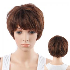 Short Neat Bang Fluffy Straight Mixed Color Synthetic Hair Wig