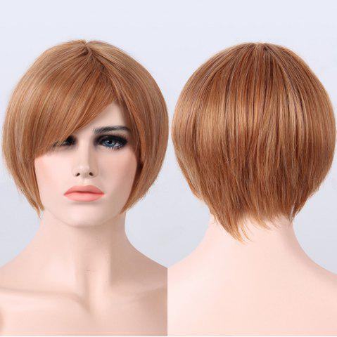 Buy Mixed Color Side Bang Capless Straight Short Synthetic Wig