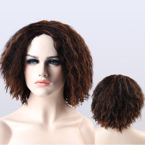 Unique Adiors Highlight Short Synthetic Fluffy Curly Wig