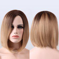 Short Straight Synthetic Ombre Side Parting Wig