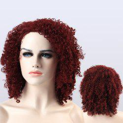 Adiors Shaggy Medium Afro Curly Synthetic Wig -