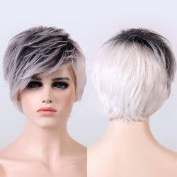 Adiors Short Ombre Color Fluffy Straight Synthetic Wig -