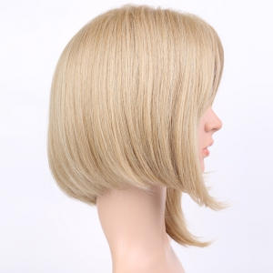 Asymmetric Short Straight Middle Parting Synthetic Wig - COLORMIX