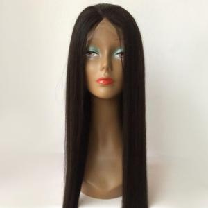 Long Straight Middle Parting Lace Front Human Hair Wig -