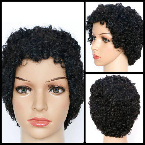 Shops Skilful Short Curly Synthetic Wig BLACK