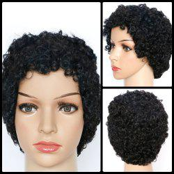 Skilful Short Curly Synthetic Wig