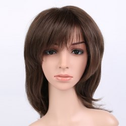 Long Shaggy Silky Straight Inclined Bang Synthetic Wig