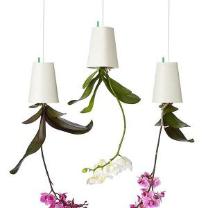 Home Decoration Upside Down Hanging Bonsai Flower Sky Planter