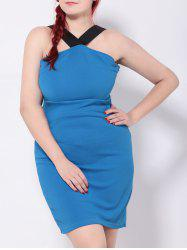 Panel Sleeveless Bodycon Party Dress