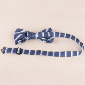 Classical Stripe Pattern Tie Pocket Square Bow Tie -