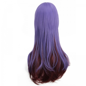 Long Full Bang Straight Double Color Synthetic Cosplay Wig - BLUE + BROWN