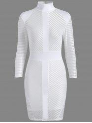 Zip Long Sleeve Sheer Mesh Sheath Dress