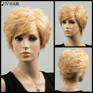 Siv Short Layered Straight Side Bang Human Hair Wig - Golden Brown With Blonde