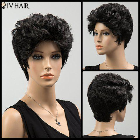 Online Short Shaggy Curly Siv Human Hair Wig