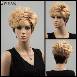 Siv Short Ombre Oblique Bang Layered Shaggy Curly Human Hair Wig -