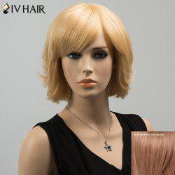 Siv Short Silky Straight Inclined Bang Human Hair Wig