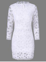 Tight Openwork Lace Sheath Dress