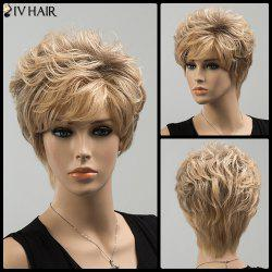 Short Shaggy Side Bang Curly Siv Human Hair Wig