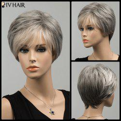 Short Shaggy Side Bang Straight Mixed Color Siv Human Hair Wig