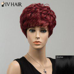 Short Shaggy Neat Bang Layered Curly Siv Human Hair Wig