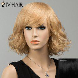 Gorgeous Short Shaggy Side Bang Curly Siv Human Hair Wig
