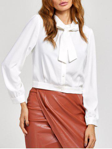 Trendy Long Sleeves Pussy Bow Blouse