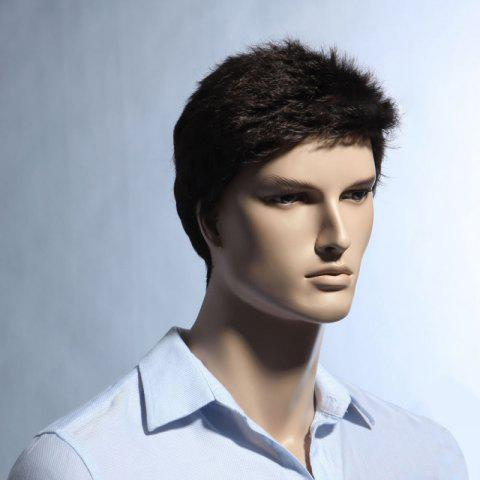 Unique Short Pixie Cut Fluffy Straight Men's Synthetic Wig - BROWN  Mobile