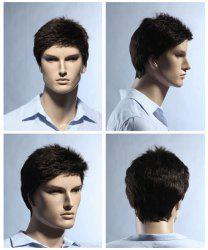 Short Pixie Cut Fluffy Straight Men's Synthetic Wig