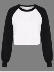 Raglan Sleeve Color Block Panel T-Shirt