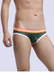 Striped Edging Low Rise Perspective Mesh Briefs