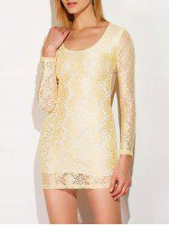 Mini Lace Sheer Long Sleeve Bodycon Dress