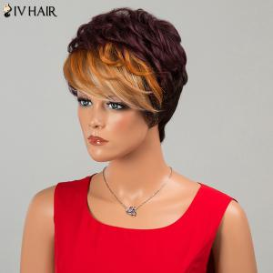 Siv Hair Short Fluffy Neat Bang Layered Curly Human Hair Wig -