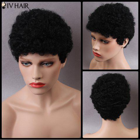 Affordable Siv Short Curly Human Hair Wig