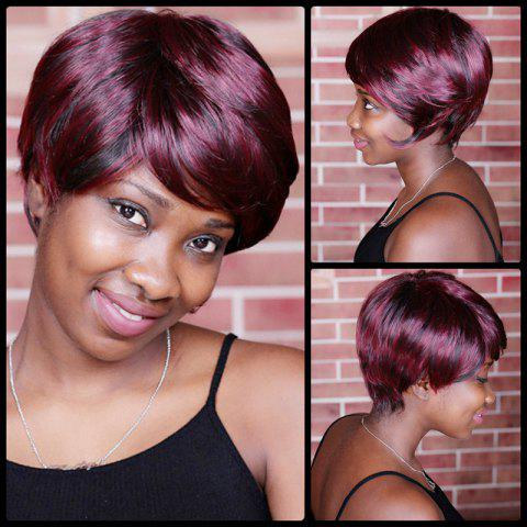Sale Short Double Color Neat Bang Spiffy Straight Synthetic Wig COLORMIX