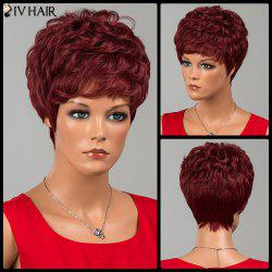 Siv Hair Short Full Bang Layered Curly Human Hair Wig