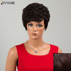 Siv Hair Short Neat Bang Fluffy Layered Curly Human Hair Wig