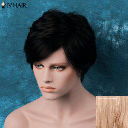 Siv Layered Short Oblique Bang Straight Human Hair Wig - BROWN WITH BLONDE