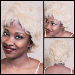 Short Fluffy Curly Synthetic Wig