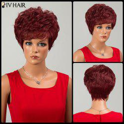 Siv Hair Fluffy Short Neat Bang Layered Curly Human Hair Wig