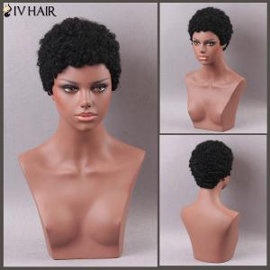 Siv Hair Short Curly Human Hair Wig