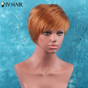 Short Full Bang Straight Siv Hair Human Hair Wig -