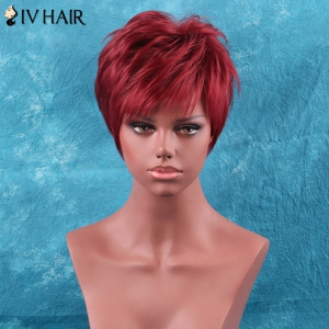 Short Full Bang Fluffy Straight Siv Hair Human Hair Wig -