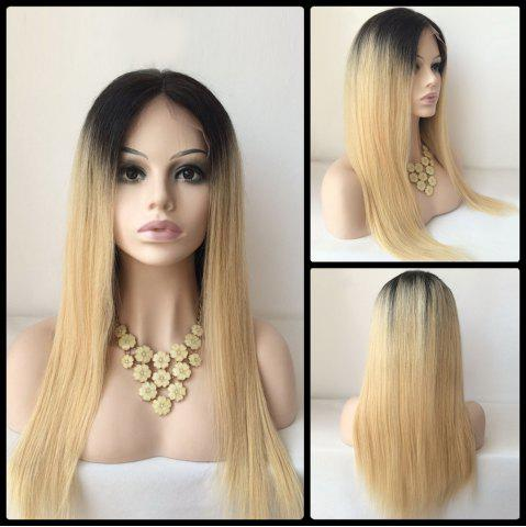 Buy Long Middle Part Lace Front Straight Human Hair Wig COLORMIX